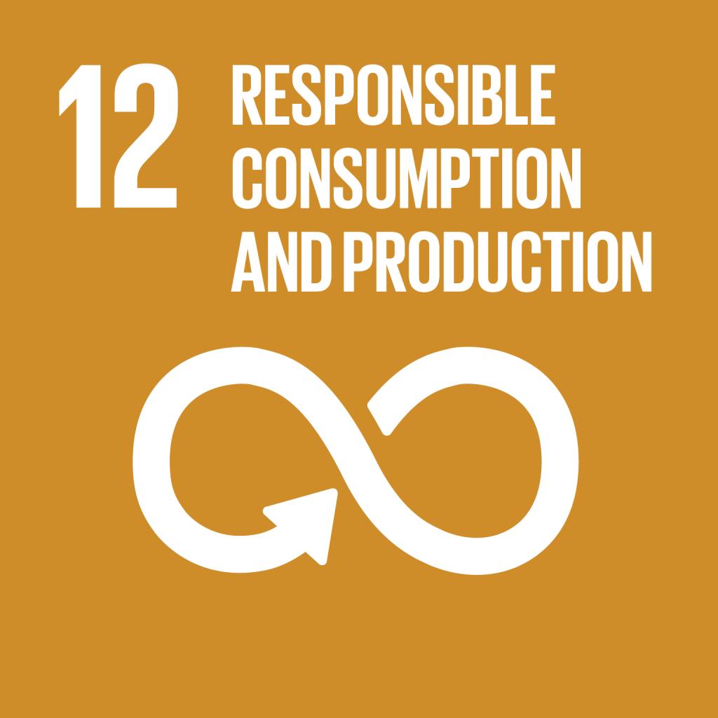 E_SDG goals_icons individual rgb 12