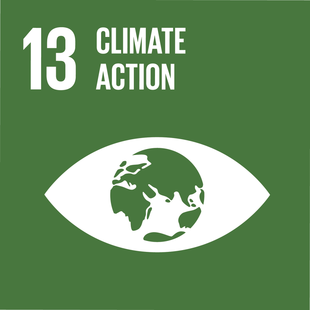 E_SDG goals_icons individual rgb 13
