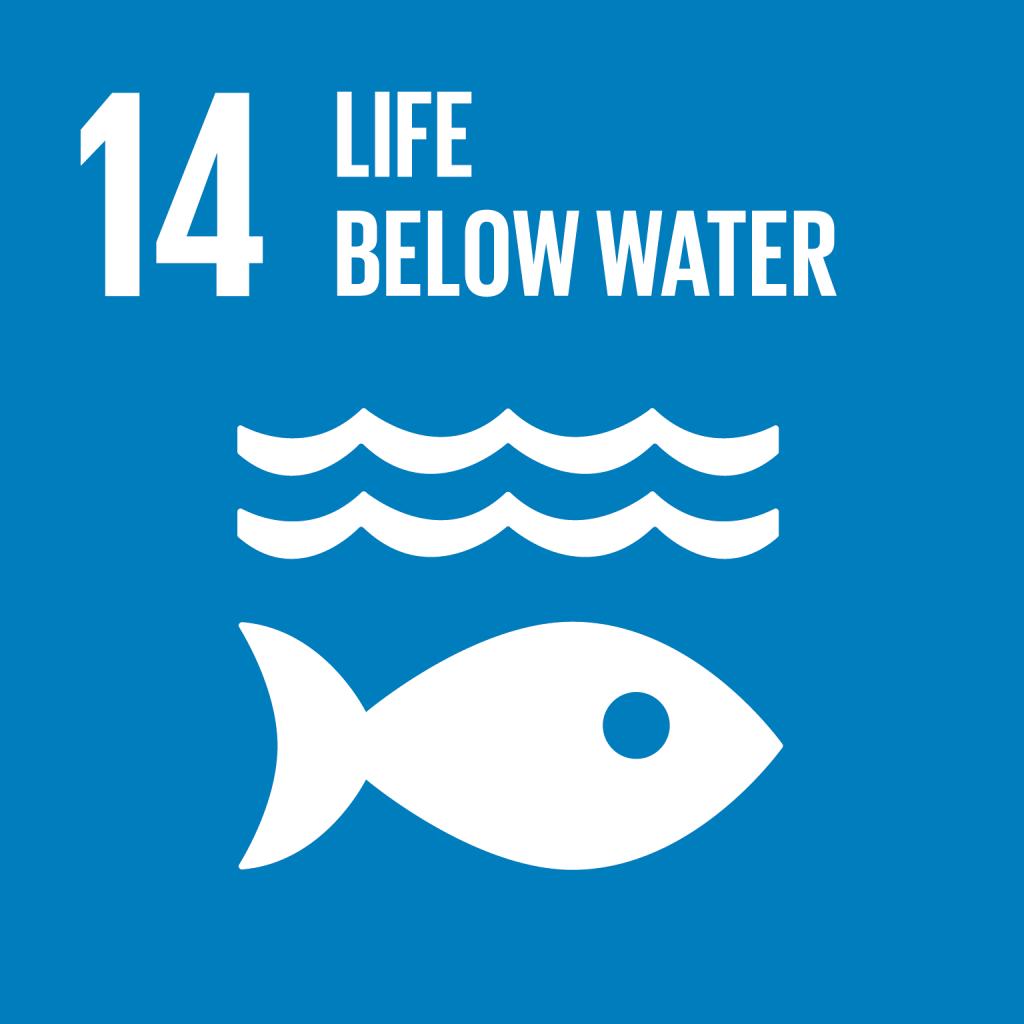 E_SDG goals_icons individual rgb 14
