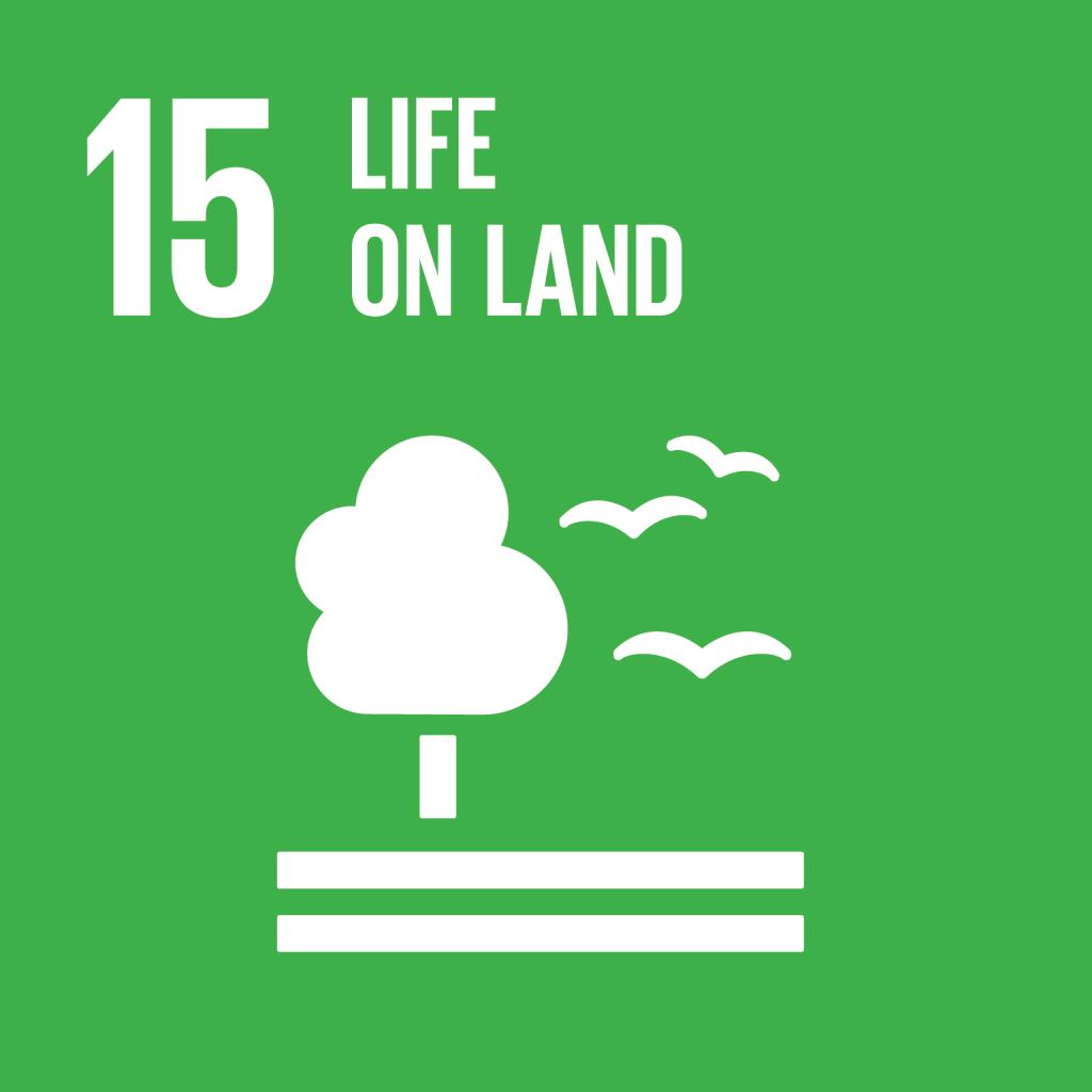 E_SDG goals_icons individual rgb 15
