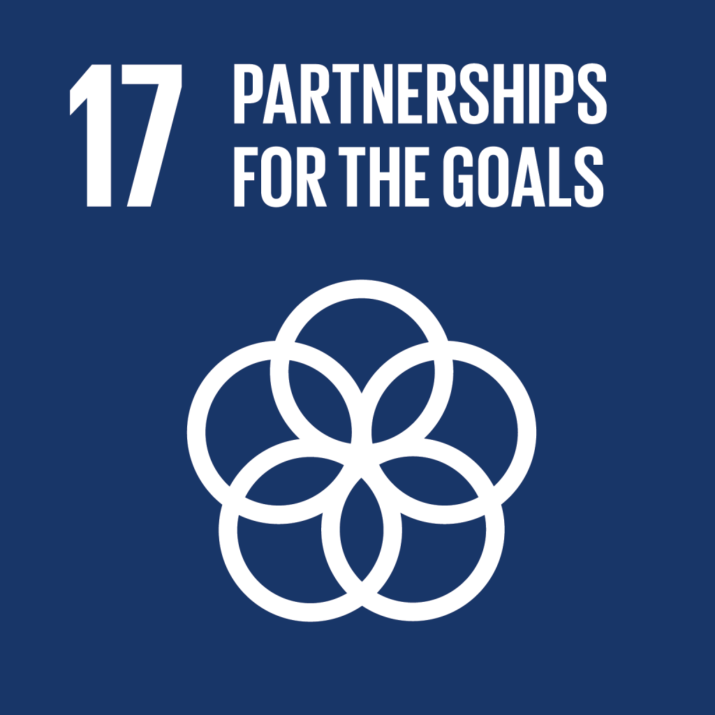 E_SDG goals_icons individual rgb 17 1