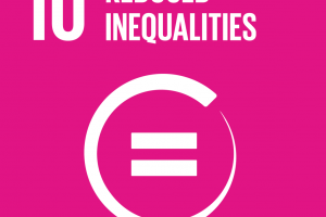 E_SDG goals_icons individual rgb 10